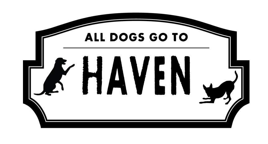HAVEN DOG RESCUE